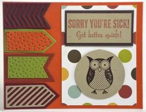 owl sorry sick
